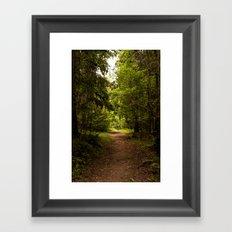 Norwegian woods Framed Art Print