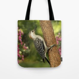 Juvenile Red Bellied Woodpecker Tote Bag