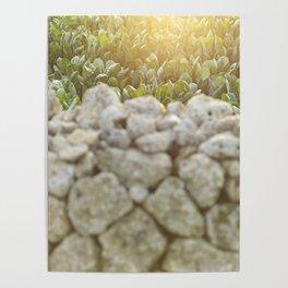 Sunset in Italy, fine art, landscape photo, Sicily photography, Puglia, Apulia, nature lover, love Poster