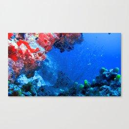 Beautiful Tropical Colorful Coral Sea Reefs Canvas Print
