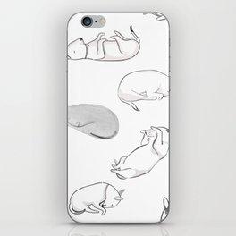 Let Sleeping Dogs Lie iPhone Skin
