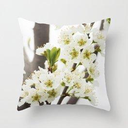 Plum Tree Blossom Throw Pillow