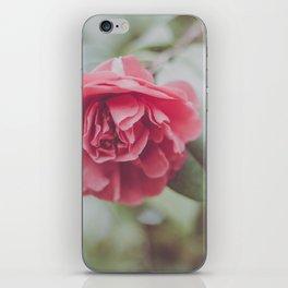 Rose Tree iPhone Skin