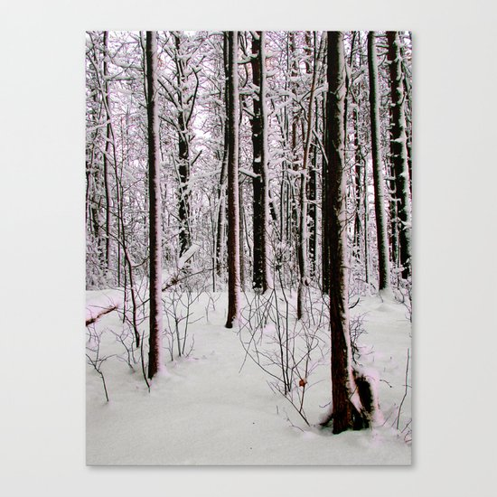 Cold Trees Canvas Print