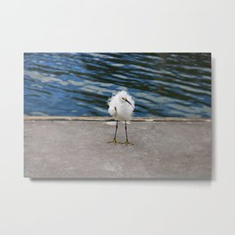 Floating on the Breeze Metal Print