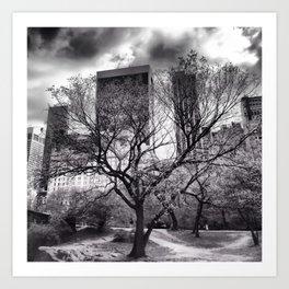 Central Park Tree. Art Print