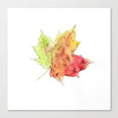 Fall Leaf #2 Canvas Print