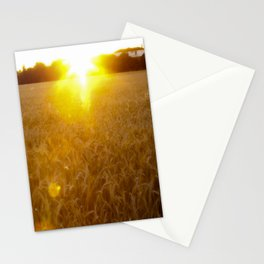 Wheat field at dawn Stationery Cards