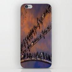 Pigeon Gangs iPhone & iPod Skin