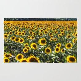 Sunflower Fields Of Summer Rug