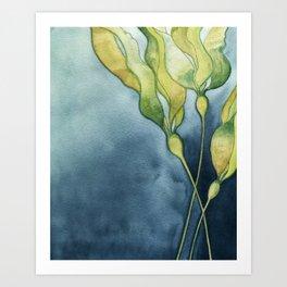 Bull Kelp Watercolor Art Print