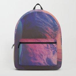 RULERS Backpack