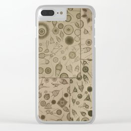 Diatom Design Clear iPhone Case