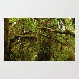 The Opulence Of The Rainforest Rug