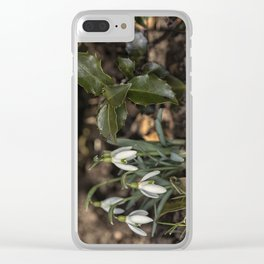 Snowdrops under a holly bush Clear iPhone Case