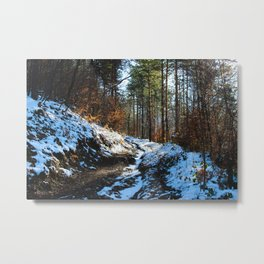 Forest road covered with white snow in winter Metal Print