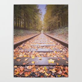 Railway in the autumn forest Poster