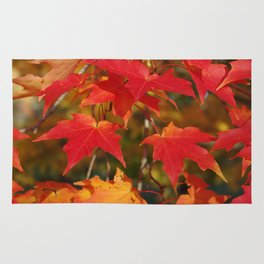 Fiery Autumn Maple Leaves 4966 Rug