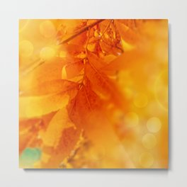 Colored Autumn Glow Leaves Metal Print