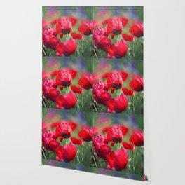 Field of lovee Wallpaper