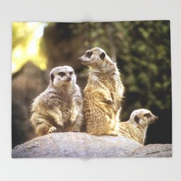 Act Natural Meerkats Throw Blanket