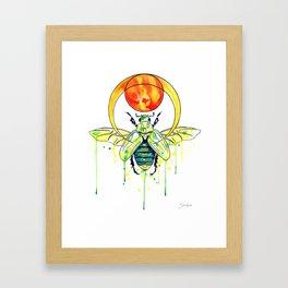 Scarab Beetle Framed Art Print