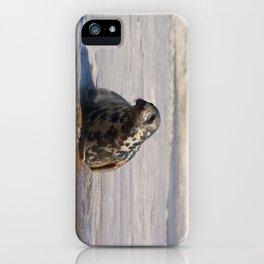 horsey seal iPhone Case