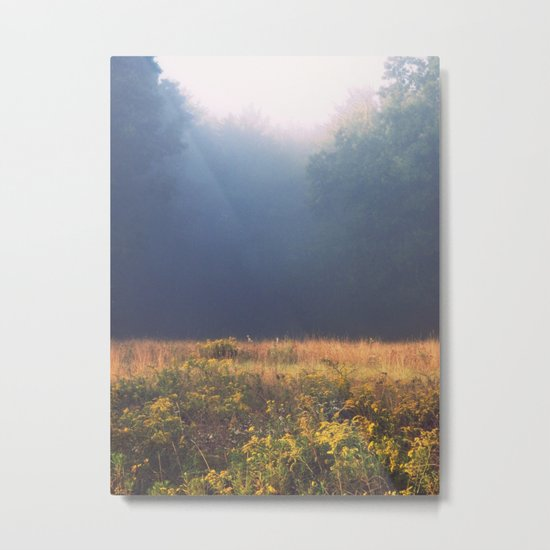 Mother Nature's Palette Metal Print