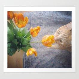 Tulip Friend Art Print