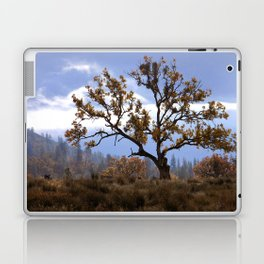 Early morning fog in the valley Laptop & iPad Skin