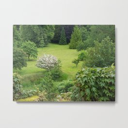 Where the Fae play Metal Print