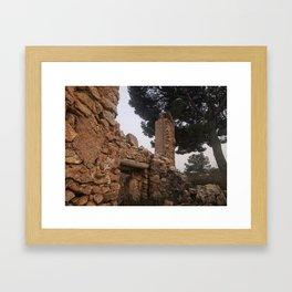 028 Framed Art Print