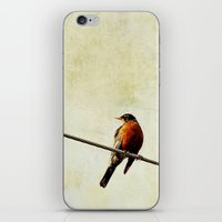 robin iPhone & iPod Skins featuring Robin by Beverly LeFevre