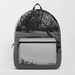 Ghost Trees - Driftwood Beach Backpack