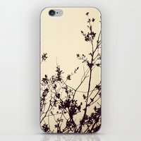 silhouette iPhone & iPod Skins featuring Silhouette by Skye Zambrana