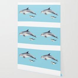 Blue Bottlenose dolphin Wallpaper