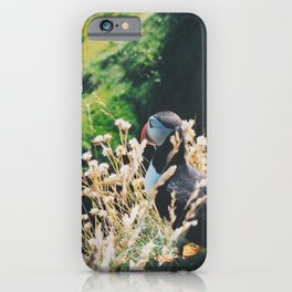 Puffin On Staffa Island iPhone Case