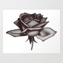 Black and White Rose in Ink Art Print