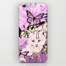 Frieda's Baby Cats in Pink iPhone & iPod Skin