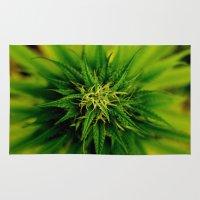 marijuana Area & Throw Rugs featuring Marijuana by TilenHrovatic