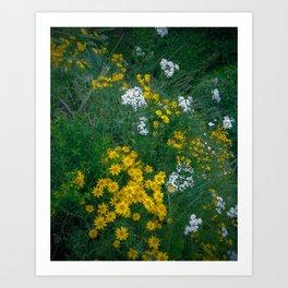 Flowers On the Edge Art Print