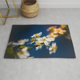 Beautiful White Jasmine Flowers With Green Leaves Against A Blue Background Rug