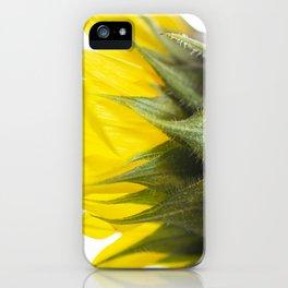 Sunflower IV iPhone Case