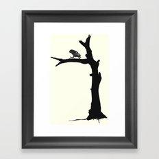 The Little Owl In The Tree Framed Art Print