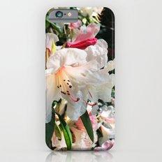 Rhododendron garden iPhone 6s Slim Case