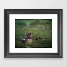 Wood Ducks at the Lake Framed Art Print