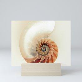 Shell of life Mini Art Print