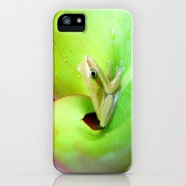 Baby Frog iPhone Case