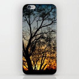 Against The Sun iPhone Skin