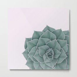 Big Green Echeveria Design Metal Print